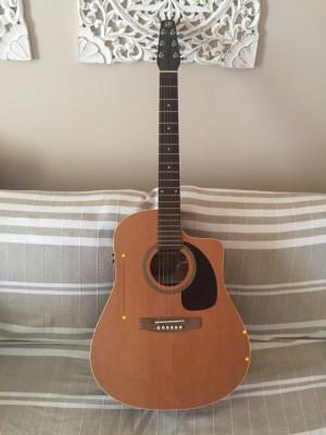 Guitarra electroacústica SEAGULL S6+CW