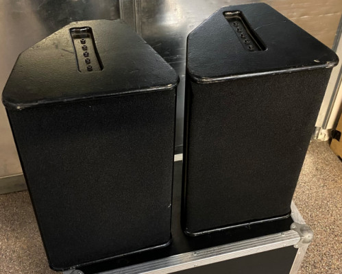 Vendo altavoces Nexo PS10 con flight case