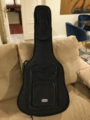 Tanglewood Tw 155 As
