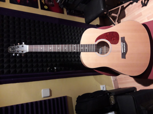 Guitarra Acústica Seagull S6