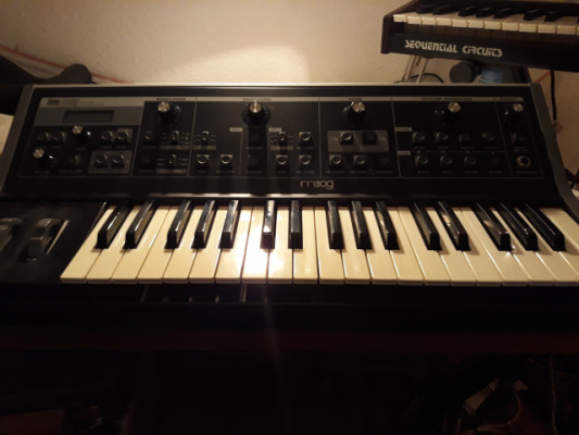 Moog Little Phatty Stage