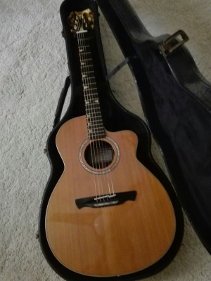 Cambio Acustica Alhambra A-Luthier