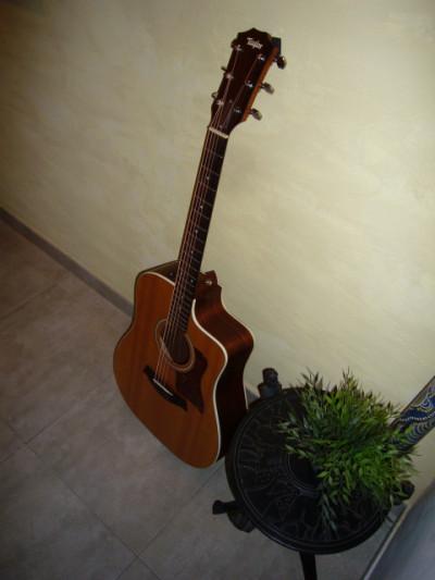 Cambio guitarra taylor 210 ce nuevos cambios