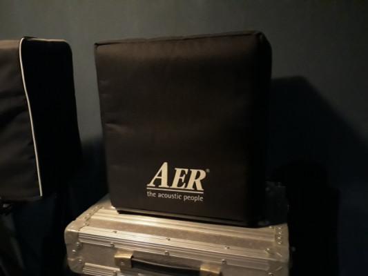 Amplificador AER Domino 2