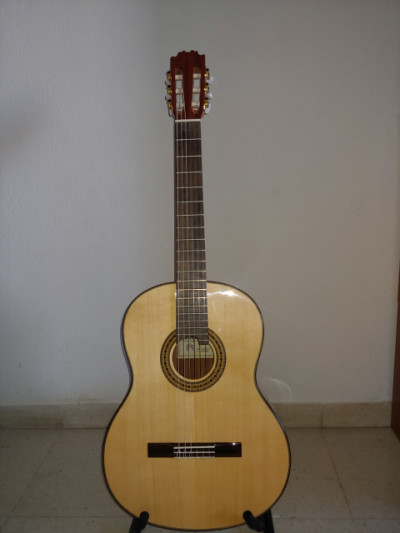 Vicente Tatay c320205