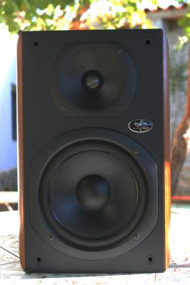 Pareja de Monitores pasivos Das Monitor 8