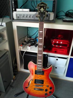 Guitarra Eléctrica y Estuche
