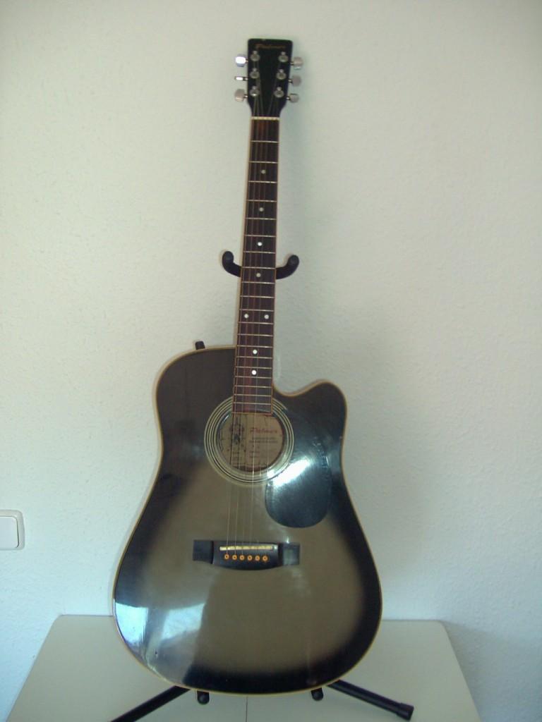 Vendo guitarra palmer en barcelona hispasonic for Guitarras barcelona